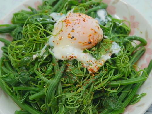 佛手瓜藤可以吃吗 对身体有什么 好处 聚餐 网