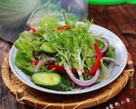 排毒的蔬菜沙拉