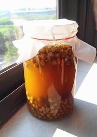 土法自制黄豆酱的做法 步骤11