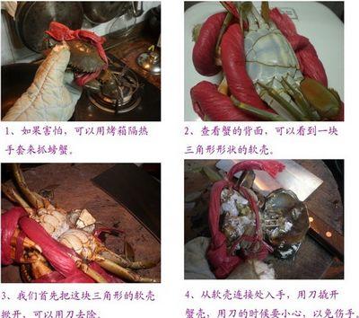 螃蟹怎么杀图解