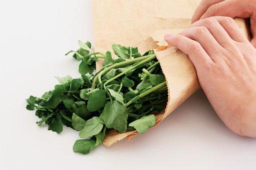 用报纸或纸袋包起来,放入冰箱冷藏,约可存放3~5天。