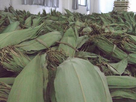肉粽子怎么做_粽叶是什么叶子?图解包粽子的叶子是什么植物-聚餐网