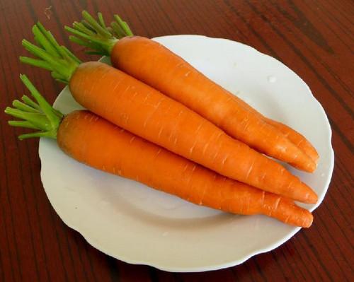 胡萝卜的热量