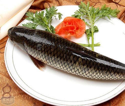 与草鱼相克的食物表