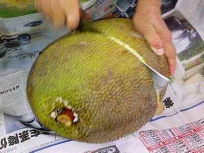 菠萝蜜怎么吃图解