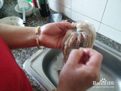 鱿鱼最干净的清洗与处理
