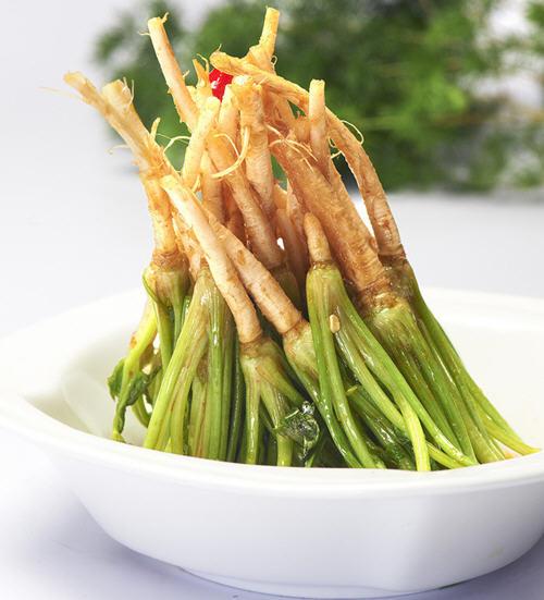 菠菜的根能吃吗