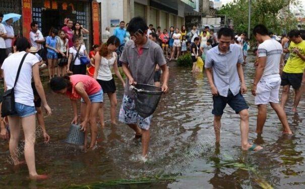 发洪水怎么抓鱼?发洪水时的抓鱼方法(6)