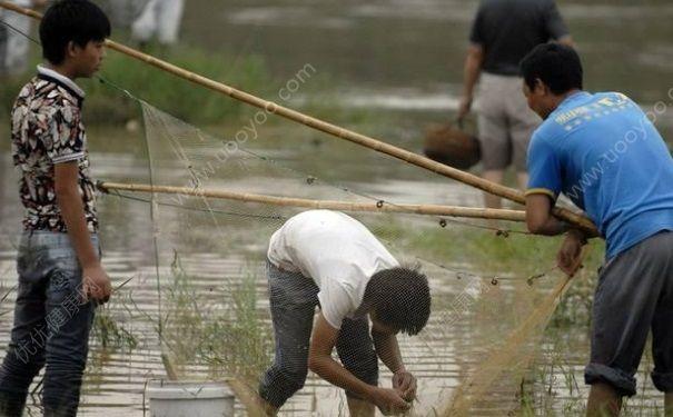 发洪水怎么抓鱼?发洪水时的抓鱼方法(4)