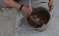 手工自制皮蛋,松花蛋的做法 步骤2