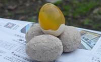 手工自制皮蛋,松花蛋的做法 步骤5