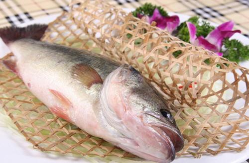 鲈鱼的营养价值及功效