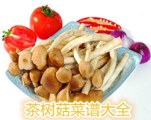 茶树菇菜谱大全