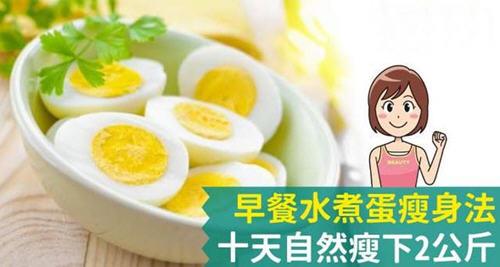 早餐水煮蛋瘦身法让你十天自然瘦下2公斤