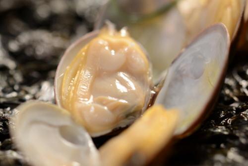 蛤蜊肉热量高吗?蛤蜊肉的热量是多少