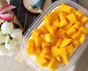 芒果千层盒子