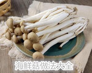 海鲜菇的做法大全