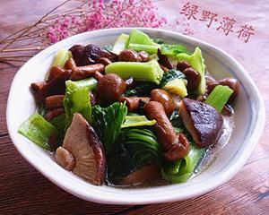 小白菜烩蘑菇