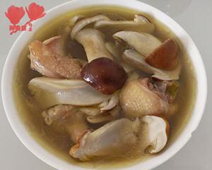 鲜松茸炖鸡汤